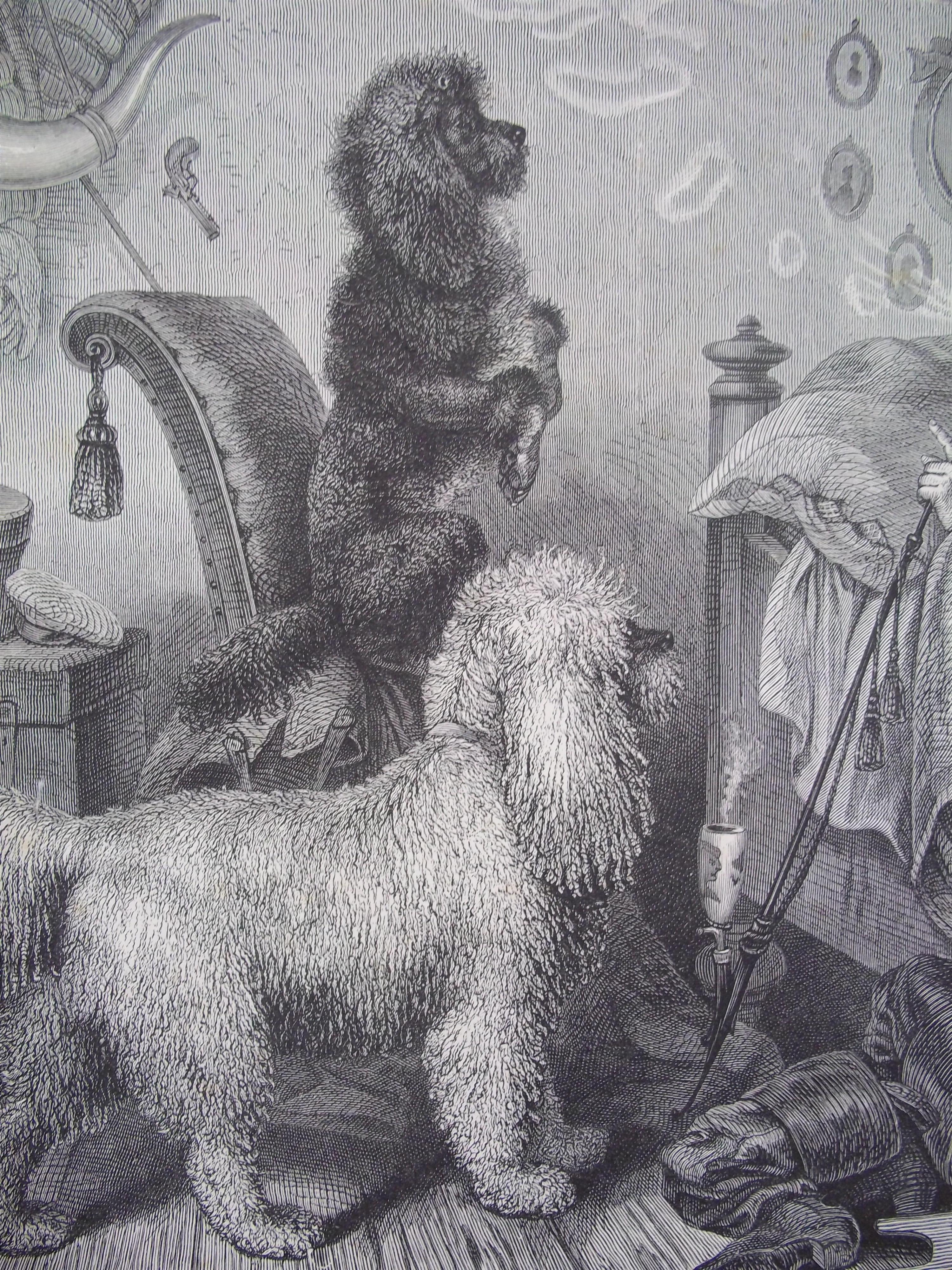 Picture from 'Illustrated Book of the Dog', by Vero Shaw (1890)