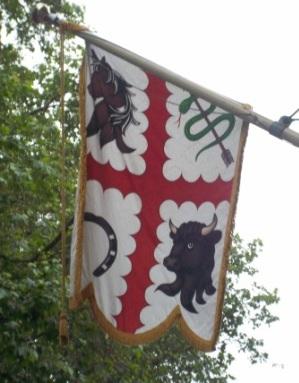 RCVS Flag displaying the arms